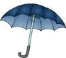 umbrella-6-2